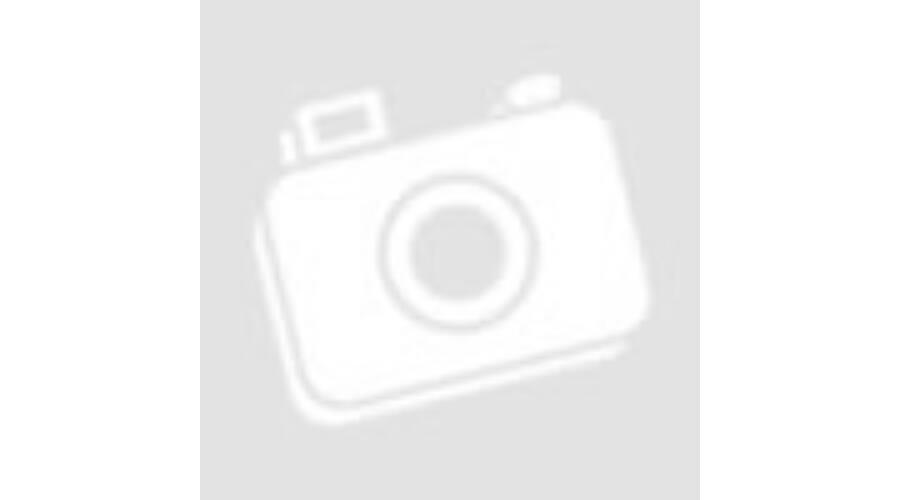 Cluse Triomphe Silver Bicolour Mesh - Triomphe - Itstimeshop b01ab44dd6